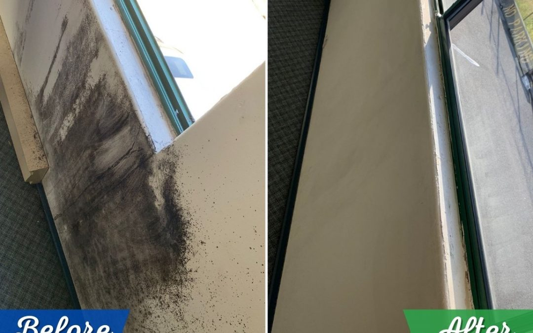 Vancouver Commercial Cleaning Job Site Before and After Cleaning Photos